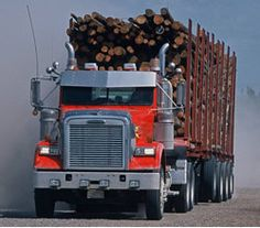 threats to the boreal forest-logging