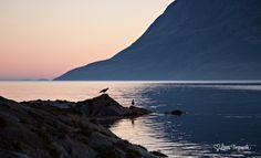 Sommernatt i Velfjord