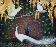 Cockatoos and Peacock