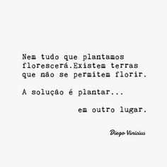 Nem tudo que plantamos florescerá The Words, More Than Words, Cool Words, Cool Phrases, Sweet Quotes, Positive Vibes, Quote Of The Day, Favorite Quotes, How To Memorize Things