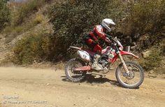 CNTT 2015 - Bianchi Prata