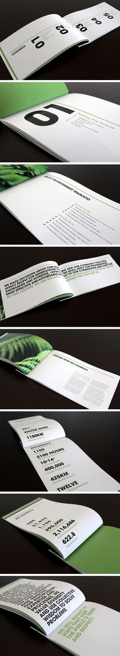 raewyn brandon | environment waikato annual report