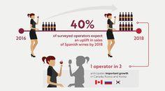 El 40% de todos los encuestados prevén una subida de las ventas de vinos españoles para 2018