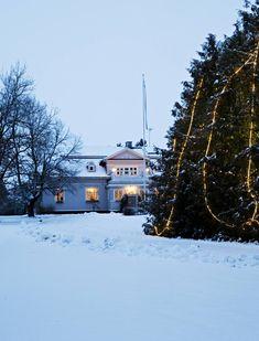 Isoon kanadan-tuijaan sytytetään valot ensimmäisenä adventtina.