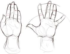 Helpful Harrie hand reference open and straight? Body Drawing, Anatomy Drawing, Figure Drawing, Drawing Hands, Hand Reference, Anatomy Reference, Drawing Reference, Drawing Techniques, Drawing Tips