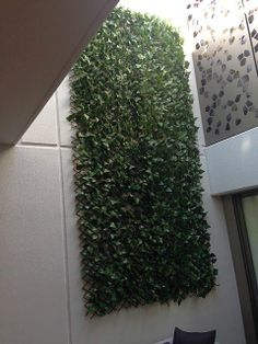 Ivy Trellis - extendable to 2.800 x 800. its UV treated and can be used to hide ugly fences, pool pump and equipment or used as art as per this image. Great for privacy in Apartment living. Endless Greenery 6/30 Erindale Rd, Balcatta