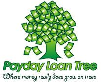 Personal loan bad credit not payday loan photo 9