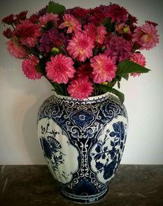 Dahlia,Hortensia, chrysant @Haarlem