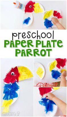 Preschool: Rainforest Crafts for Kids - parrot paper plate preschool. Cute idea for pirate th Pirate Preschool, Preschool Jungle, Pirate Activities, Preschool Crafts, Crafts For Preschoolers, Kids Crafts, Kids Pirate Crafts, Summer Activities, Outdoor Activities