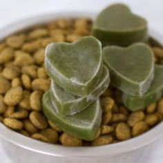 3 Ingredient Green Smoothie Bites - the perfect, easy & healthy dog treat! Vegan, gluten-free, oil-free & no added sugar. Dog Biscuit Recipes, Dog Treat Recipes, Healthy Dog Treats, Dog Food Recipes, Peanut Butter Protein Cookies, Vegan Peanut Butter, Cookies Vegan, Vegan Keto Recipes, Gluten Free Recipes For Dinner
