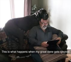 I Mean Dane! - Funny pictures and memes of dogs doing and implying things. If you thought you couldn't possible love dogs anymore, this might prove you wrong. Cute Funny Animals, Funny Animal Pictures, Funny Cute, Best Funny Pictures, Funny Dogs, Great Dane Funny, Hilarious, Funny Memes, Memes Humor