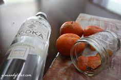 Tangerine Infused Vodka + Some Basic Booze Infusing Tips