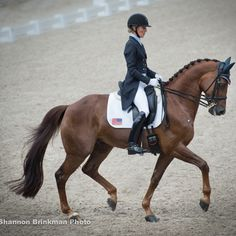 U.S. Team Goes Into Third In Rotterdam Dressage http://www.chronofhorse.com/article/us-team-goes-third-rotterdam-dressage