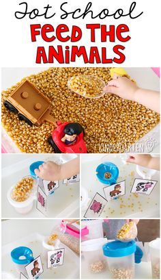 This feed the animals sensory bin was fun for little hands to explore. Perfect for a farm theme in tot school, preschool, or the kindergarten classroom. I would use plain rice crisp cereal. My kiddo would definitely fight over the dried corn! Farm Animals Preschool, Farm Animal Crafts, Preschool Themes, Preschool Lessons, Preschool Curriculum, Homeschooling, Farm Sensory Bin, Sensory Bins, Sensory Table
