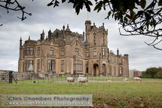 This is the real Allerton Castle where The Secret Garden (1993) was shot.