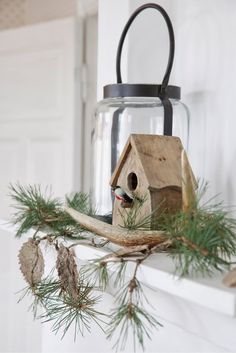 Charming Mantle decoration - bringing in the greens for the bird house. Enjoyed by www.mygrowingtraditions.com