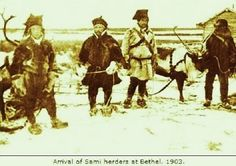 Baiki Sami reindeer herders in Bethel, Alaska - 1903.