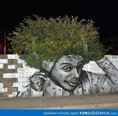 Eco-fro