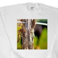 A Wooden Post for a Fence Done with a Large Aperture Close up with Blurred Green Backdrop Sweatshirt
