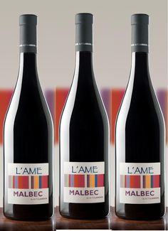 L'ame Malbec from Spain. An outstanding Crianza of 12 months in New French oak barrels. Even Argentinians love it!