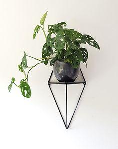 Wood And Metal Shelves, Interior Minimalista, Terrarium, Business, Plants, Design, Home Decor, Plant Decor, Shelving Brackets
