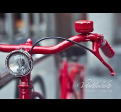 ...vallabike... by Dani Mantis, via 500px