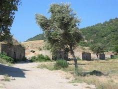 Bunkers- Gallipoli