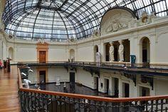 O Museu Nacional de Belas Artes, MNBA é uma das mais importantes instituições culturais do Chile e um dos mais antigos museus de arte da América Latina.   Fundado em 18 de setembro de 1880, então sob a denominação de Museu Nacional de Pinturas, ocupa desde 1910 um edifício situado no Parque Florestal, no centro de Santiago.