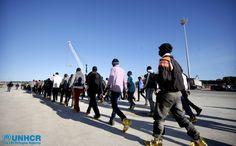 Un particolare delle operazioni di sbarco dei 1.123 #migranti soccorsi da navi impiegate nell'operazione Mare Nostrum. Tra loro ci sono anche 47 donne e 18 bambini  UNHCR/F. Malavolta www.unhcr.it