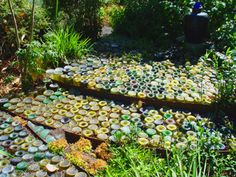 wine beer bottle pave pathway garden backyard