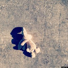 How reunited a little boy with his stuffed bunny rabbit Amy I thought of jonty