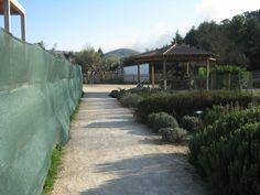 parque biológico da lousã - Pesquisa do Google