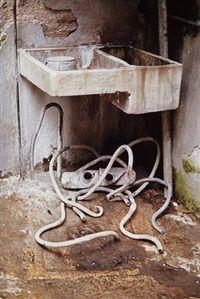 Octopus (Pulpo), 1991