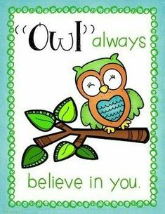 Classroom Decor: Owl Themed Motivational Posters by Kelly Benefield Owl Classroom Decor, Classroom Themes, Classroom Door, Preschool Classroom, Preschool Activities, Kindergarten, Owl Quotes, Owl Sayings, Life Quotes