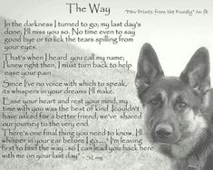 Dogs ♥ isn't it the truth! How hard it is to loose the only true friends on earth!