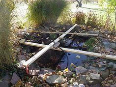 winterizing your koi pond