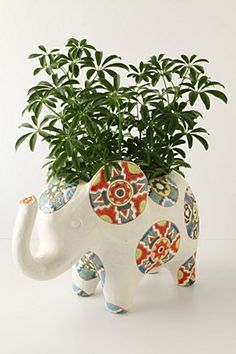 elephant medallion pot