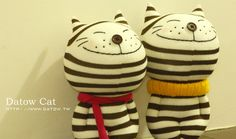 gato-calcetin Cats from shocks