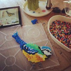 Bird hama perler