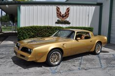 1978 SE Solar Gold Trans Am.turned 16 in 1978 and this was exactly like my very first car! 1978 Trans Am, 1978 Pontiac Trans Am, Pontiac Firebird Trans Am, Old Muscle Cars, American Muscle Cars, Cool Car Pictures, Car Pics, Smokey And The Bandit, Pontiac Cars
