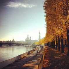 WHAT A GREAT TOWN! - @j4kobc- #webstagram #Dresden #Germany #Autumn #IndianSummer #Skyline #October #Frauenkirche #Elbe