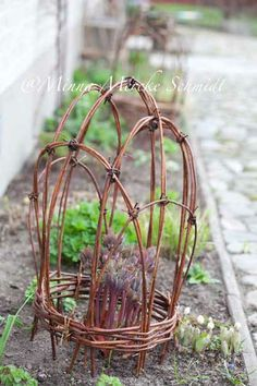 Great support with twigs. // Great Gardens & Ideas //