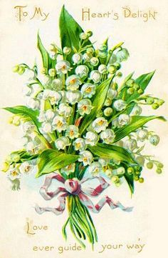 The Language of Flowers - Lily of the Valley = Happiness Returned Vintage Pictures, Vintage Images, Lily Of The Valley Flowers, Arte Floral, Vintage Diy, Vintage Greeting Cards, Botanical Prints, Vintage Postcards, Vintage Flowers