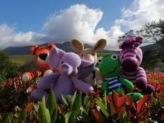 Group photo of crochet amigurumi made by Speckled Tortoise Brighten Your Day, Tortoise, Dinosaur Stuffed Animal, Teddy Bear, African, Group, Toys, Crochet, Animals