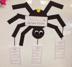 A Spoonful of Learning: Spider Week!!