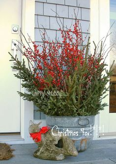 Christmas greens in an old galvanized washtub | farmhouse Christmas