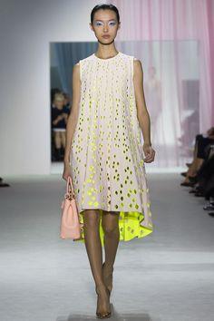 Spring 2013 Ready-to-Wear  Christian Dior
