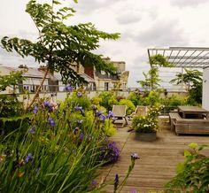 xavier de chirac architecte paysagiste / une terrasse champêtre à montmartre, 18ème