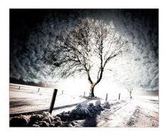Bifrost by raun