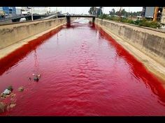 Beirut river turns blood red - The waterway of Nahr Beirut after a sewage pipe discharged a stream of unidentified effluvium on All Over The World, Around The Worlds, End Times Prophecy, Red Water, Jesus Christus, Jesus Is Coming, The Seventh Seal, End Of Days, End Of The World